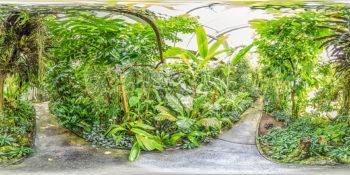 Botanischer Garten Basel - Tropenhaus