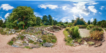 Botanischer Garten Darmstadt - Teich