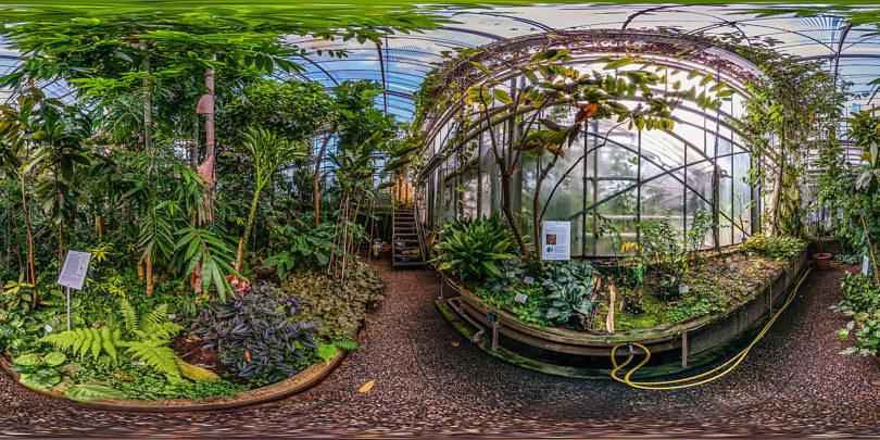 Botanischer Garten Darmstadt – Tropenhaus
