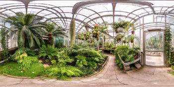 Gewächhaus für Farne und farnverwandten Pflanzen am botanischer Garten Gießen