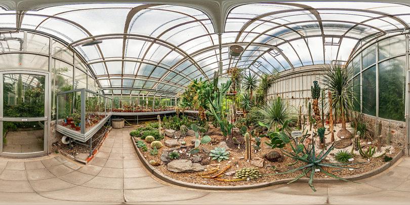 Botanischer Garten Giessen - Sukkulentenhaus