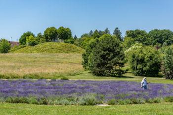 Botanischer Garten und Exotengarten der Universität Hohenheim