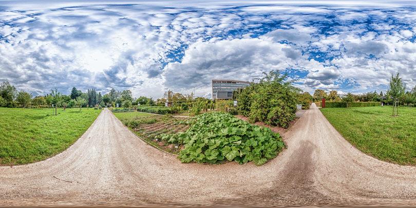 Botanischer Garten Mainz - Bauerngarten