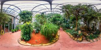 Botanischer Garten Marburg - Gewächshäuser - Botanischer Garten