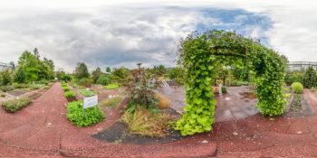 Botanischer Garten Würzburg - Arzneipflanzengarten