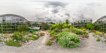 Botanischer Garten Würzburg - Mediterraner Innenhof