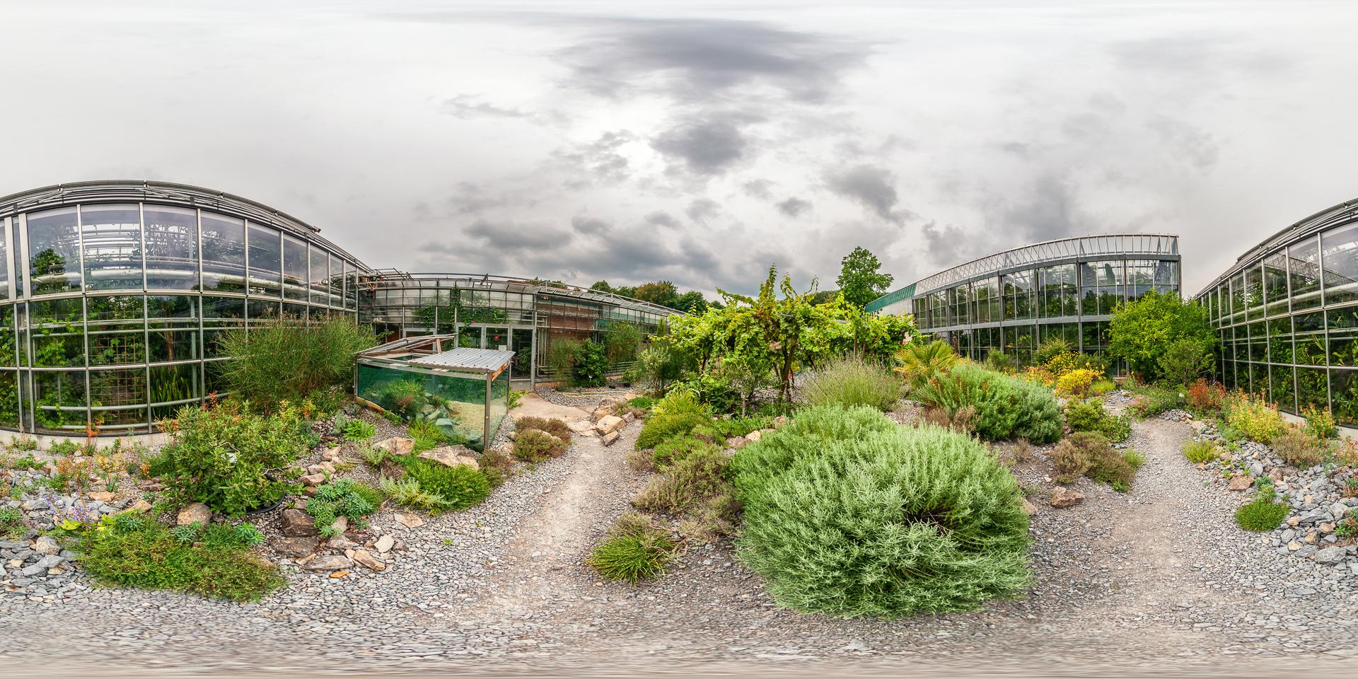 Botanischer Garten Würzburg - Mediterraner Innenhof - Botanischer Garten