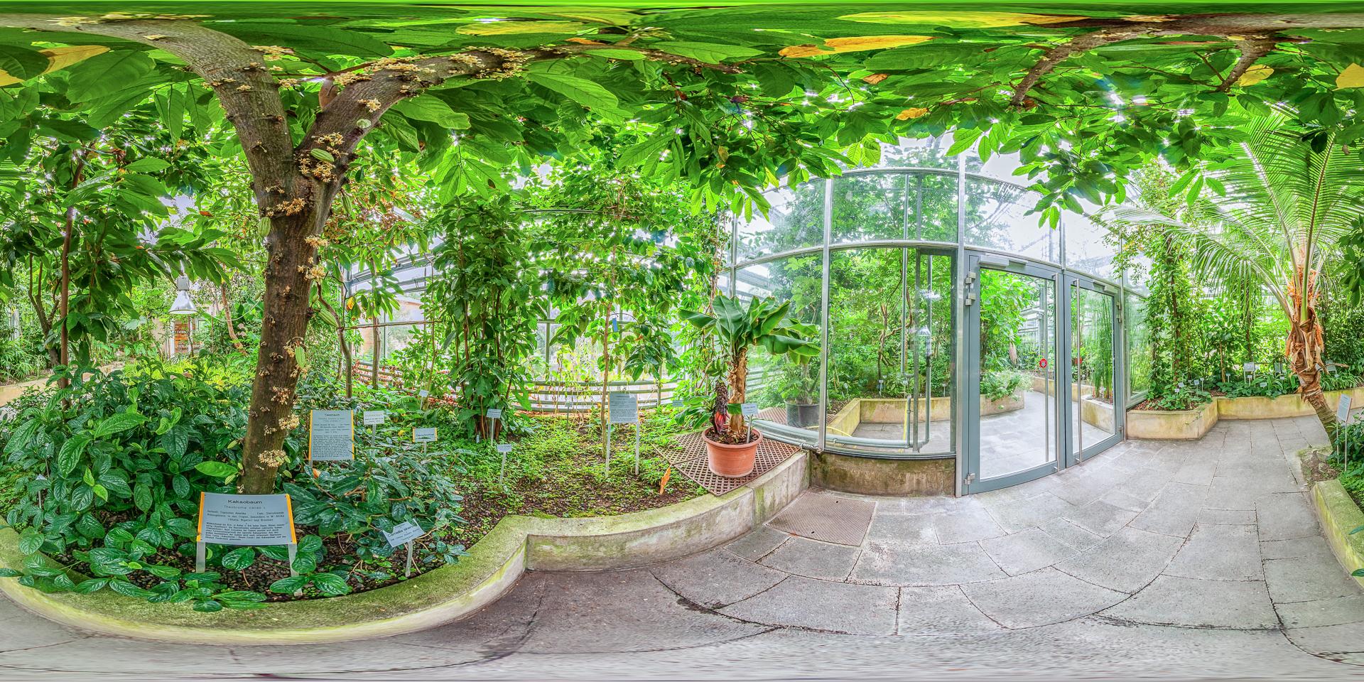 Botanischer garten  Veranstaltungen am Botanischen Garten Würzburg - Botanischer Garten