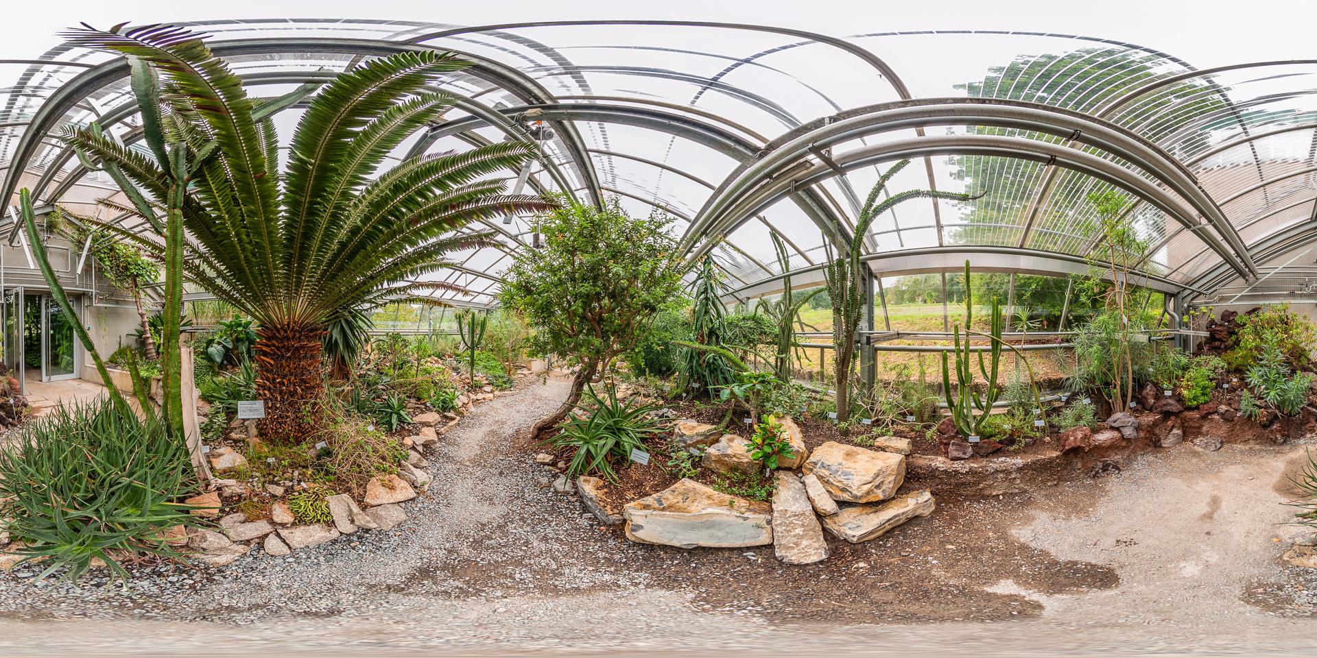 Sukkulentenhaus - Afrika und Madagarskar am botanischen Garten Würzburg