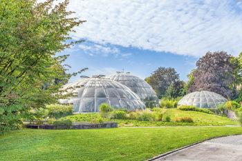 Botanischer Garten Zürich - Tropenhäuser