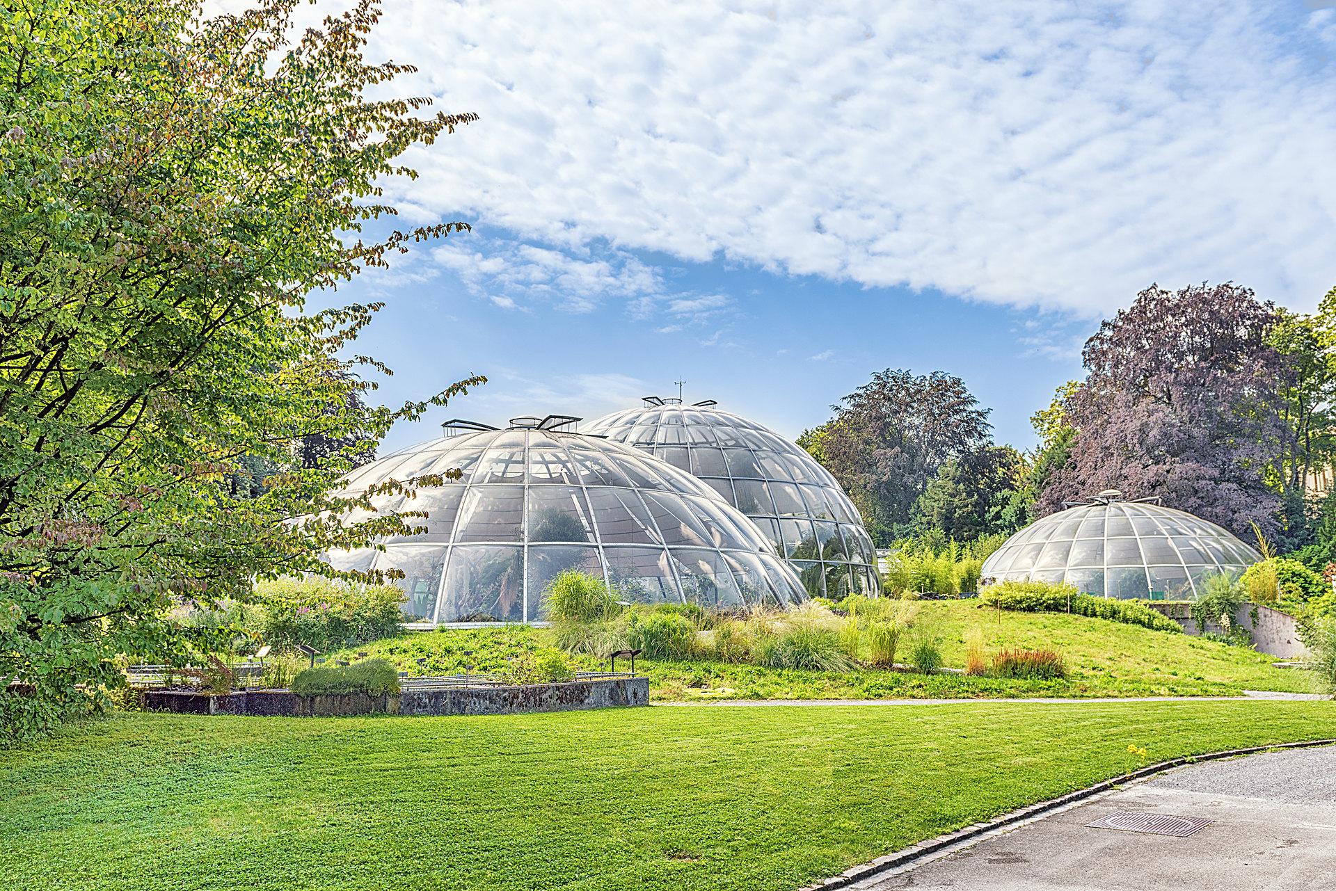 Botanischer Garten Zürich