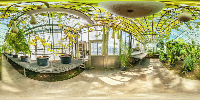 Botanischer Garten Mainz - Gewächshaus für Tropische Nutzpflanzen