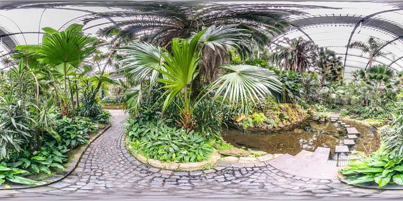 Palmengarten - Botanischer Garten