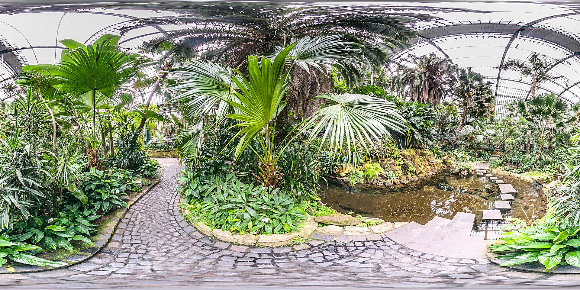 palmengarten botanischer garten. Black Bedroom Furniture Sets. Home Design Ideas