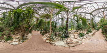 Palmengarten Tropicarium Dornwald