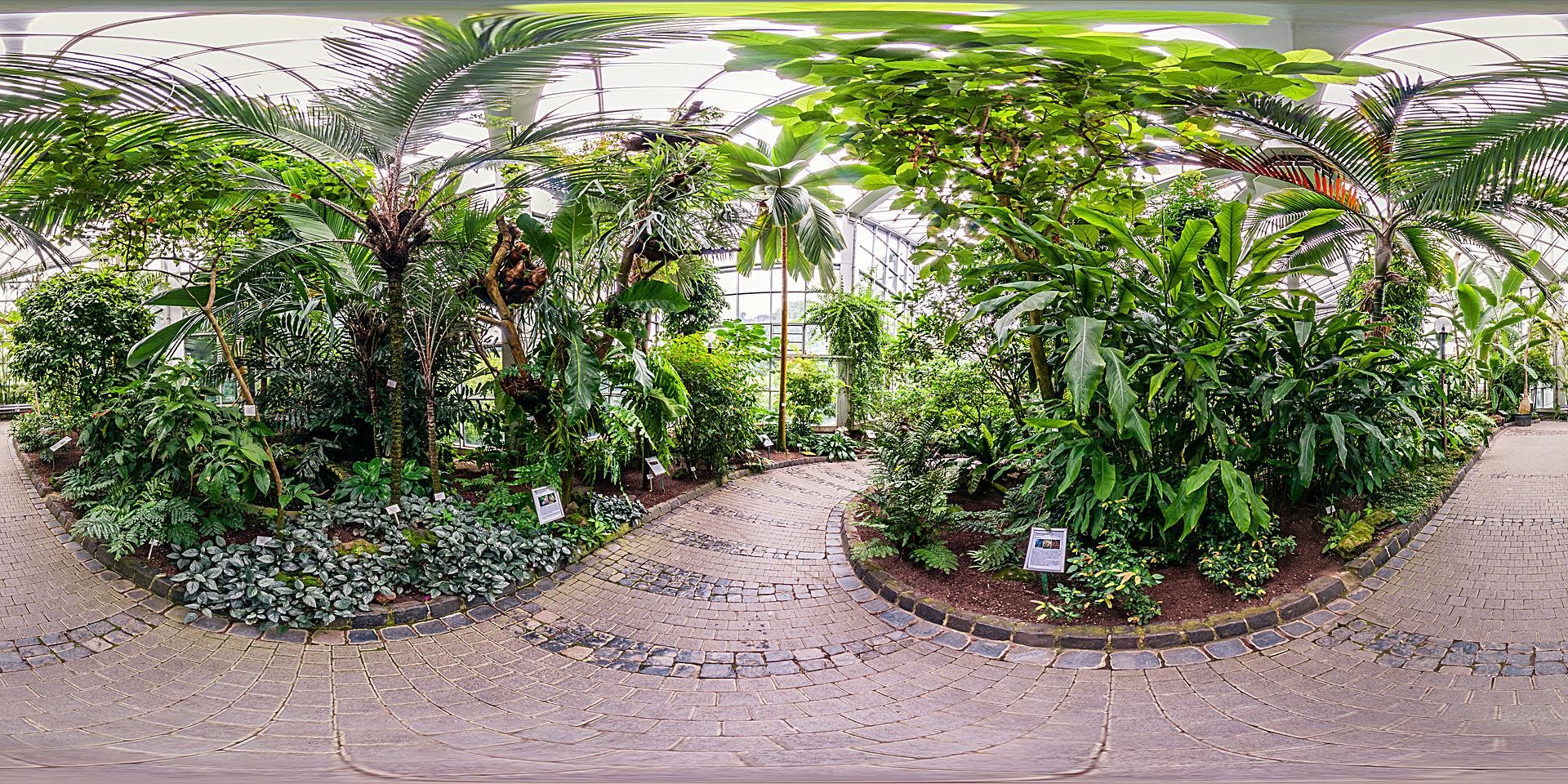 Palmengarten - Tropicarium Monsunwald